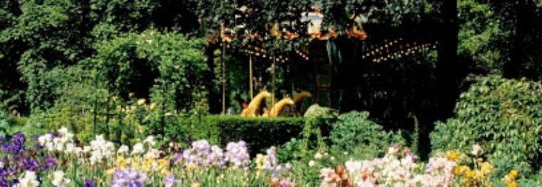 Jardin d'iris et de plantes vivaces