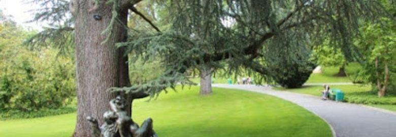 Jardin des plantes d'Angers