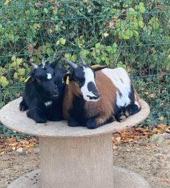 Parc Animalier de la Sainte Victoire